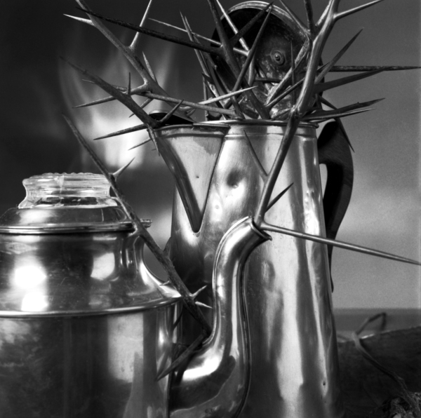 Coffee Pots with Honey Locust Thorns 2
